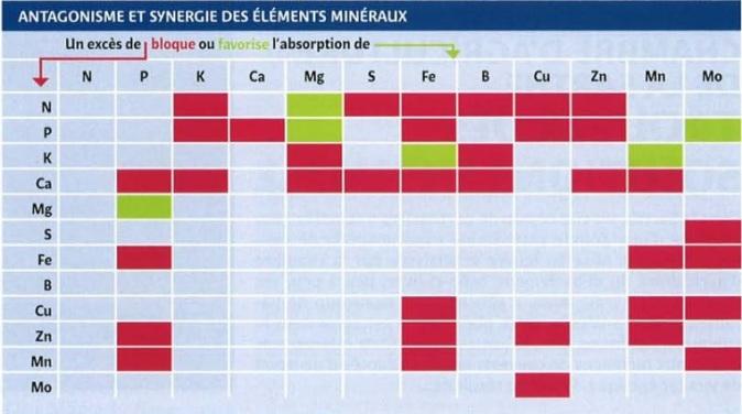 eléments minéraux