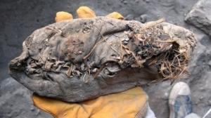 la-plus-vieille-chaussure-en-cuir-du-monde