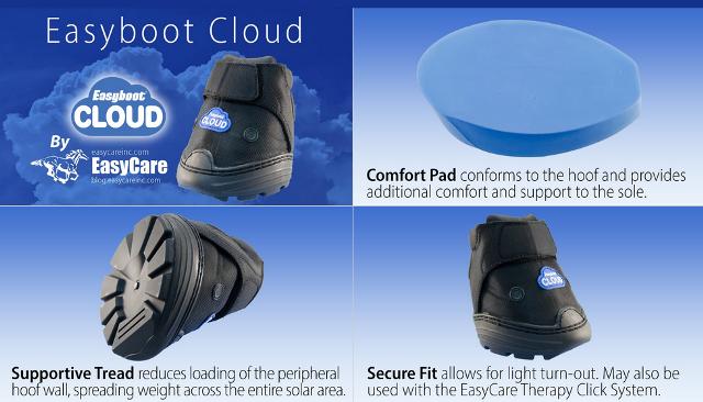 cloud-info-weblage
